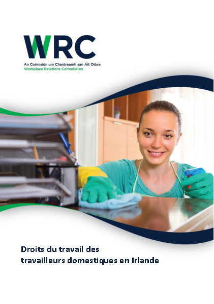 French Domestic Worker Leaflet front page preview